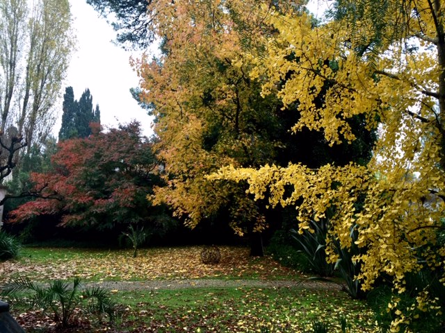 Consejos para otoño